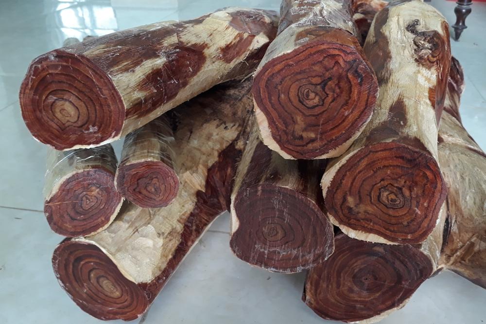 phân loại gỗ mun