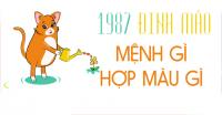 1987-menh-gi-hop-mau-gi